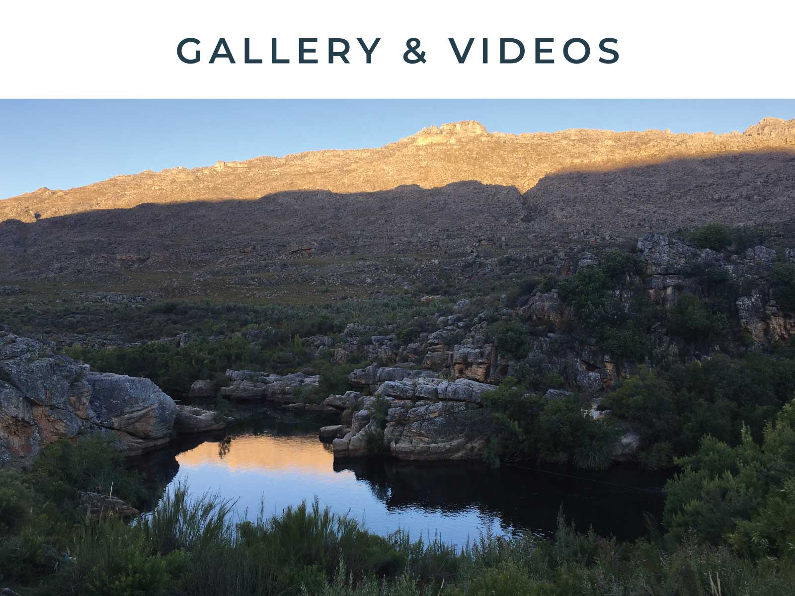 Gallery Vids